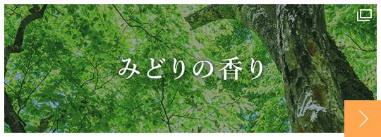 日本予防医薬株式会社 みどりの香り