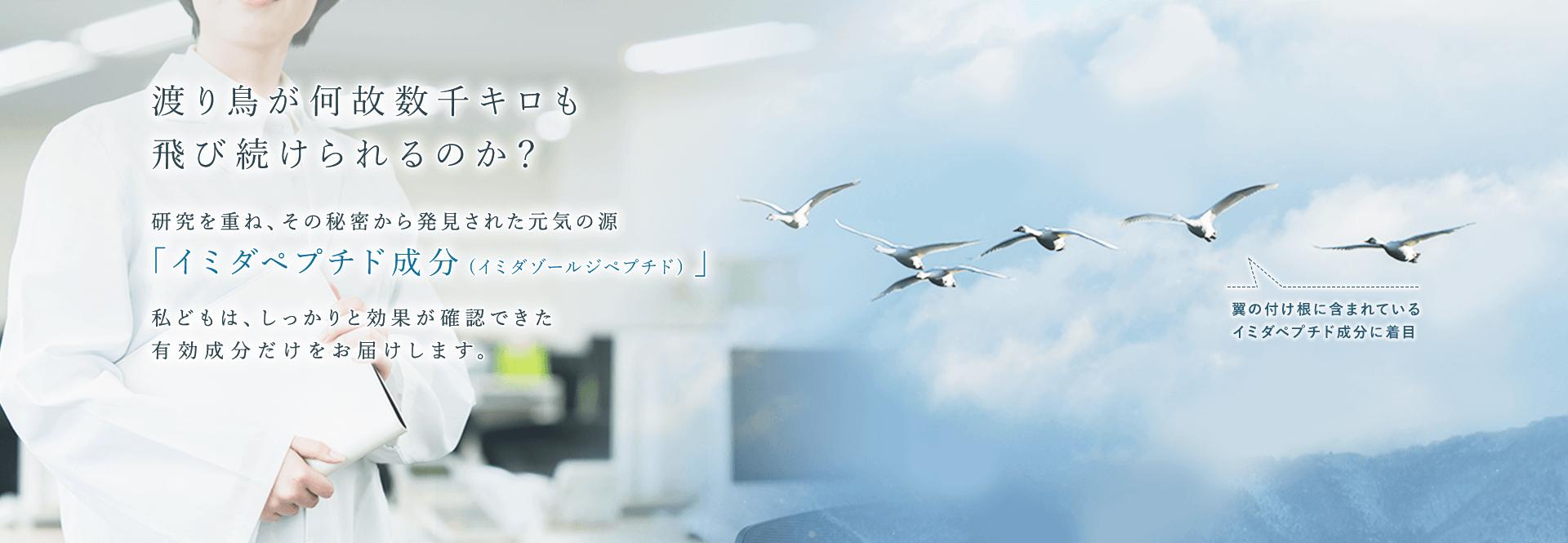 日本予防医薬株式会社 渡り鳥が何故数千キロも飛び続けられるのか?研究を重ね、その秘密から発見された元気の源「イミダペプチド成分(イミダゾールジペプチド)」私どもは、しっかりと効果が確認できた有効成分だけをお届けします。翼の付け根に含まれているイミダペプチド成分(イミダゾールジペプチド)に着目