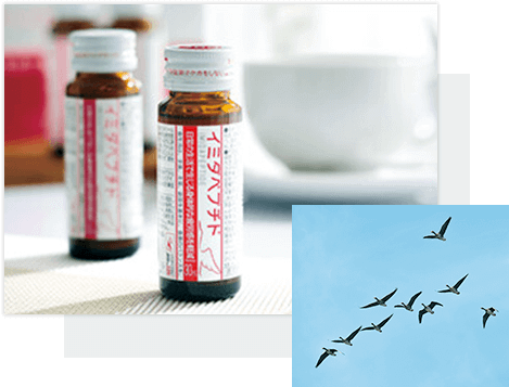 日本予防医薬株式会社。